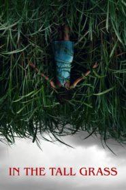 Ve vysoké trávě