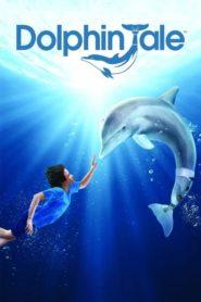 Můj přítel delfín