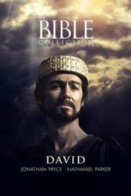 Biblické příběhy: David
