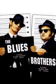 Bratři Bluesovi