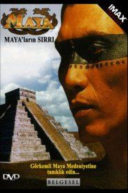 Tajemství Mayů