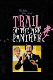 Stopa Růžového pantera
