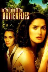 V čase motýlů