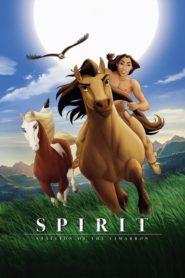 Spirit – divoký hřebec