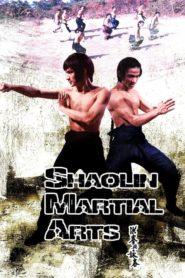 Šaolin: Škola bojových umění