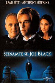 Seznamte se, Joe Black