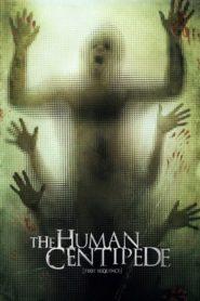 Lidská stonožka