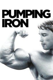 Železný Schwarzenegger