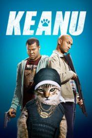 Keanu – Kočičí gangsterka