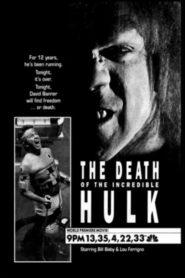 Smrt neuvěřitelného Hulka