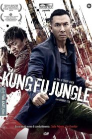 Kung Fu Zabijak